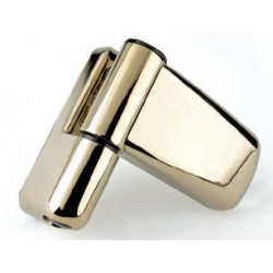 Ideal Gold Upvc Door Flag Hinges